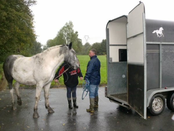 aujourdhui 16 octobre 2012 cheyenne monte dans son van pour la premiere foispetite virer chez leon et nicole tout c tres bien passer