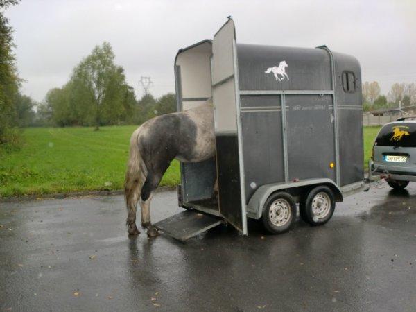 cheyenne monte dans le van pour la premiere fois ,
