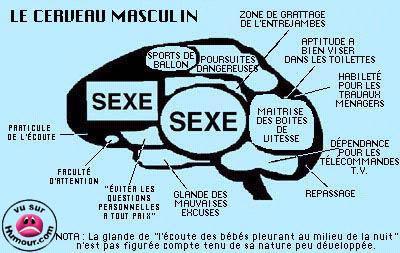 Caricature Homme la caricature du cerveau d'un homme - le site de margowiggins78