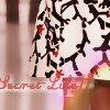 Photo de secret-life11