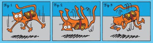 Paradoxe du chat beurée