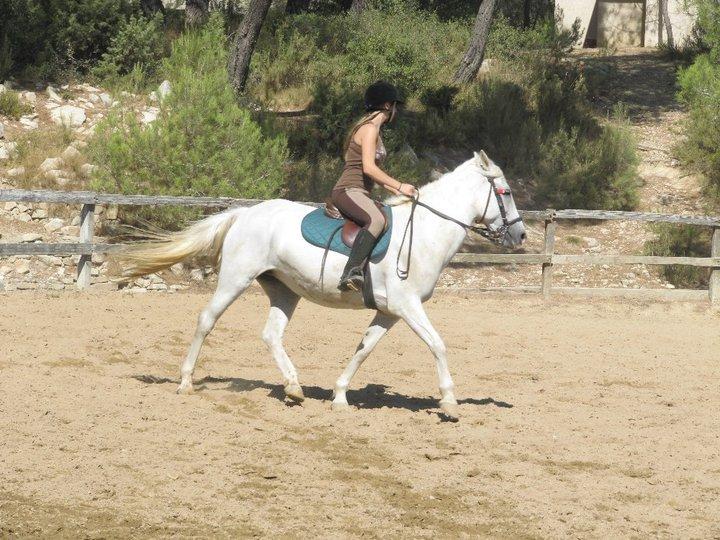 Seul un cheval à le pouvoir de te fasciner au point que tu en demeure amoureux & ça pour toute la vie..