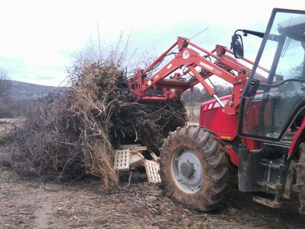 Brulage de Branches et Ramassage de Bois le 7/01/11 - 1/2