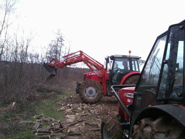 Brulage de Branches et Ramassage de Bois le 7/01/11 – 2/2