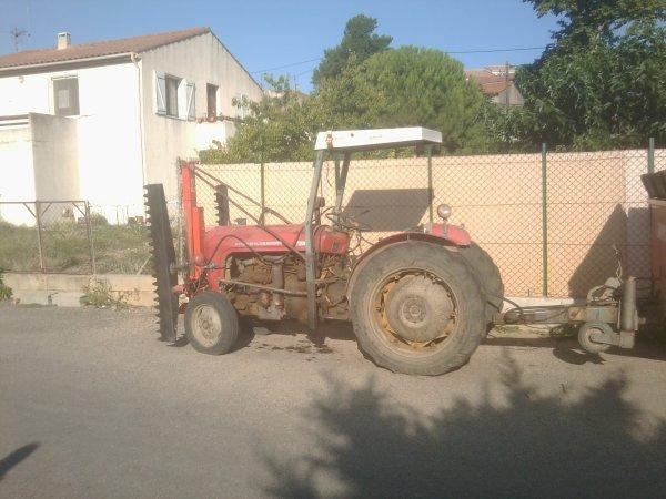 Presentation de Tracteur : Massey Ferguson 37 + Taille vigne + Benne !
