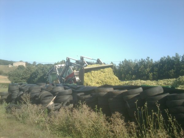 ENSILAGE DE MAIS 2011 MF 3060 + FORD 4110 - 22/08/11