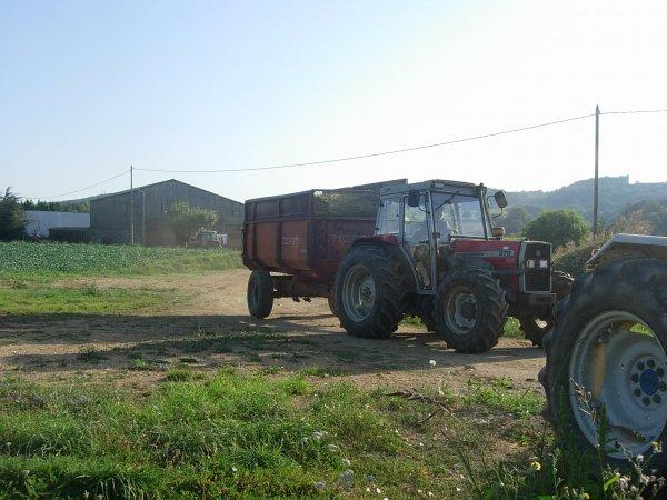 ENSILAGE DE MAIS 2011 MF 5435 & MF 375 & Renault CERES 340X - 22/08/11