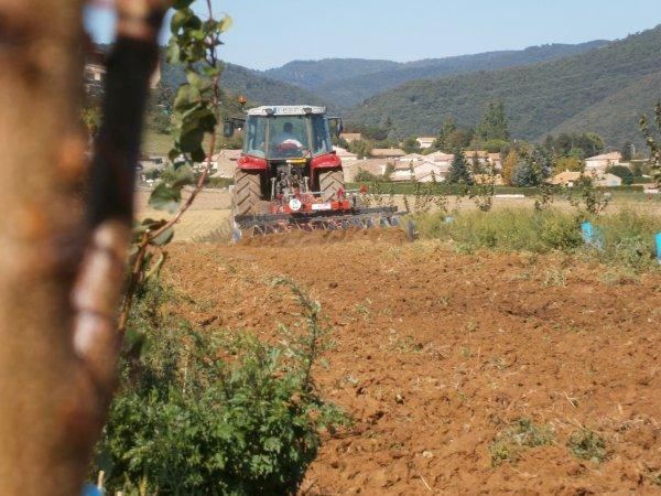 Dechaumage 2011 - MF 5460 & Gregoire Besson - 30 Aout 2011