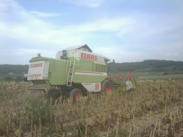 Moisson 2011 Tournesol - Claas Dominator 98 VX - 31 Aout 2011