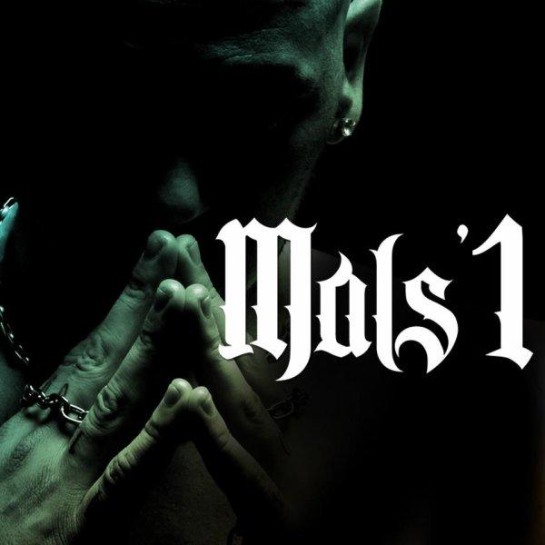 PLUS DE 18 TRACKS DANS l'ALBUM... RDV LE 24 SEPT MA MEN !!!! MALS'1 DE RETOUR COMME IBRAHIMOVIC AU PARC !! DEMAIN EXCLU ALONZO... SORTEZ LES FEUILLES...