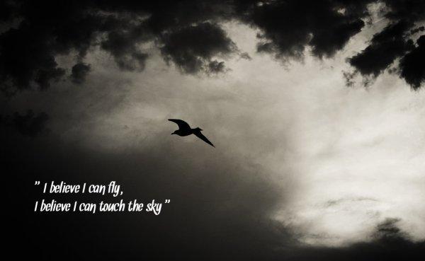 Les oiseaux ont deux ailes pour voler, moi je n'ai qu'un coeur pour t'aimer; alors il faut le protéger