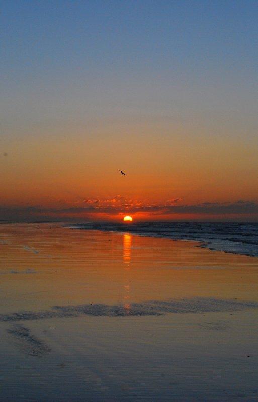 On ferme les yeux,on dit au revoir,et on se réveille le lendemain sans savoir...