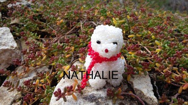 ours polaire élises 0716
