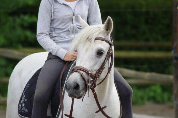 Je vais devoir arrêter de monter à cheval un moment .. :(