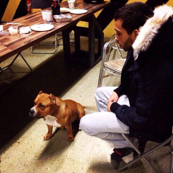 Mister You en tournage avec un chien!