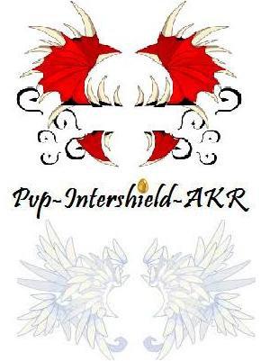 Team AKR
