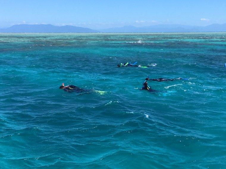 Snorkeling sur la grande barrière de corail