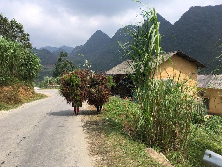 Jour 2 : de Yenh Minh à Dong Van