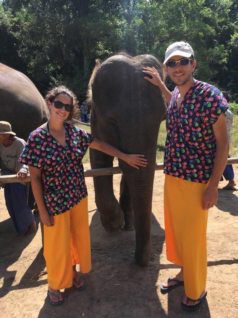 Une journée avec les éléphants