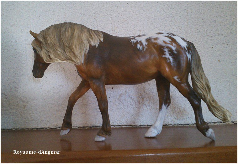 Breyer Dartmoor
