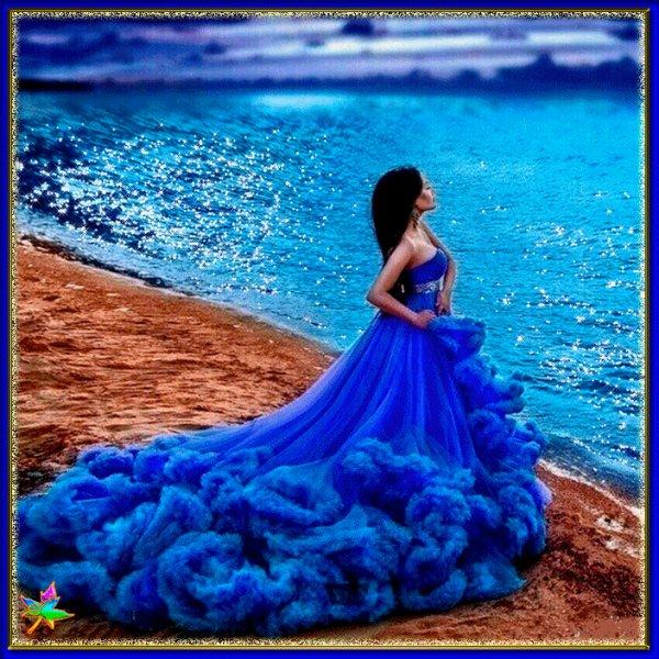 nuit bleu les zamies