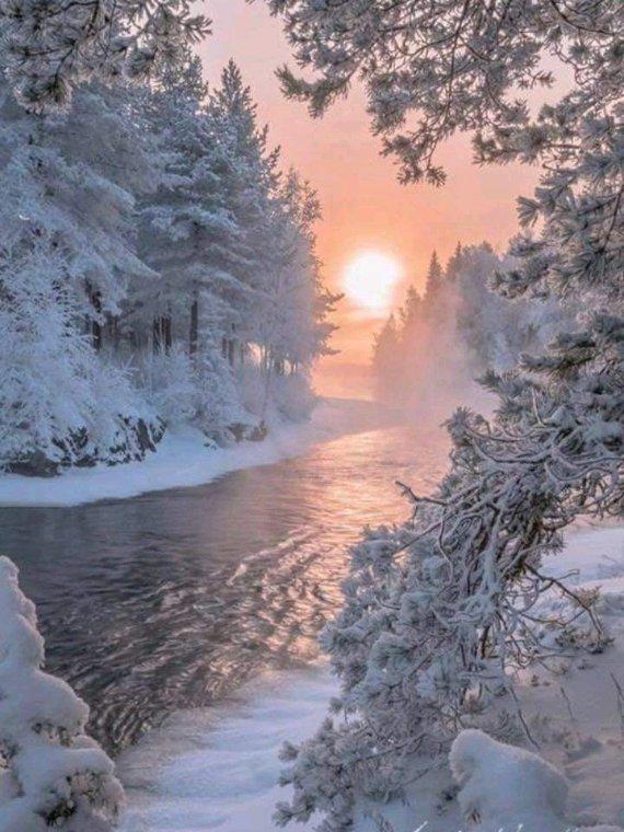 Bonne nuit les amis l'hiver arrive à grand pas e