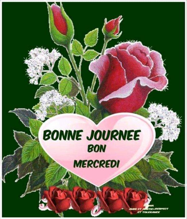 Mon mon amie la rose bonjour mon amie la rose