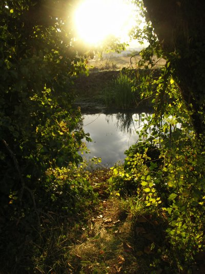 Nature, Douceur