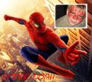 Photo de SpiderNoah