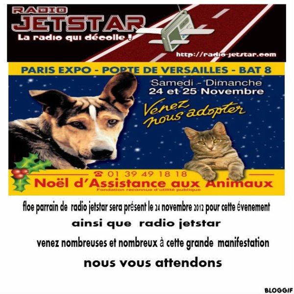 Noel Des Animaux Le 24 et  25 Novembre 2012
