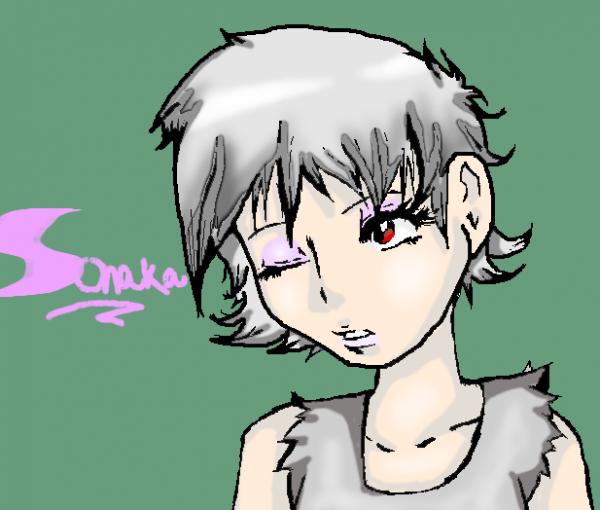 Sonaka