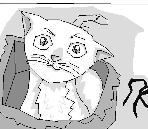 Catsi Love chapitre 1