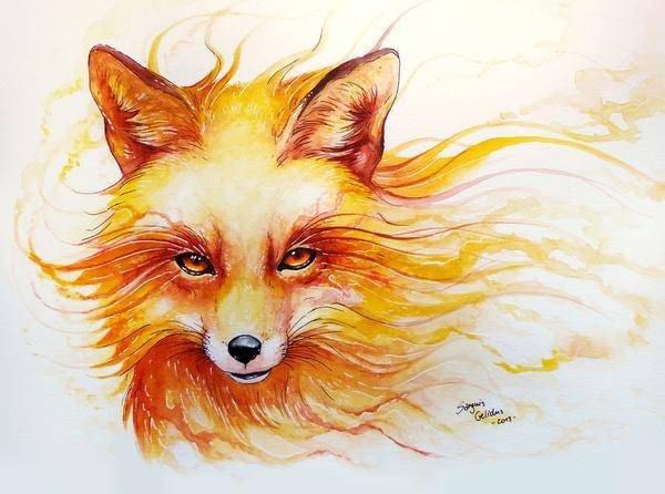 ~ Fox Trot ~