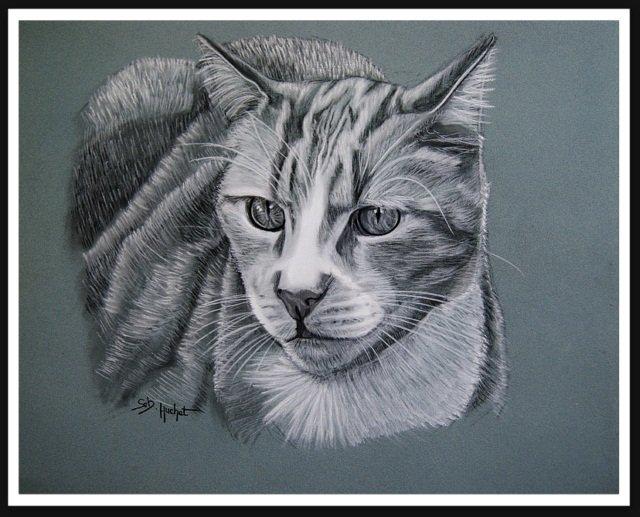 Portrait fusain de Caramel