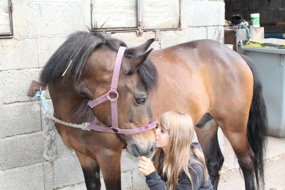 Jules où le poney de ma vie ♥