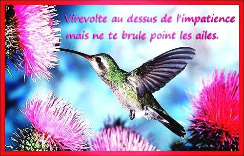 proverbes ...