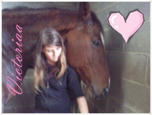 Blog de Concours-photo-horse