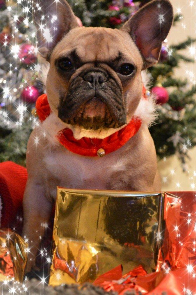 Joyeux Noel - Gaëla