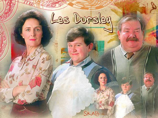 Famille et Amis : Les Dursley et le Trio d'Or