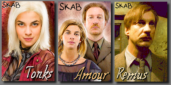 Couple : Remus et Tonks