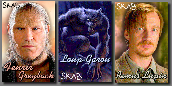 Loup-Garou :  Fenrir Greyback et Remus Lupin