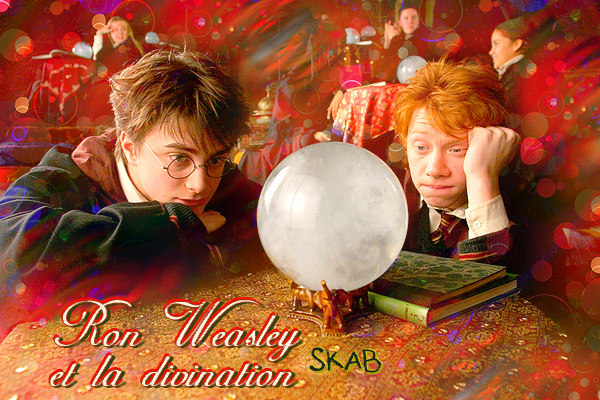 Citations de Ron Weasley par rapport à la Divination