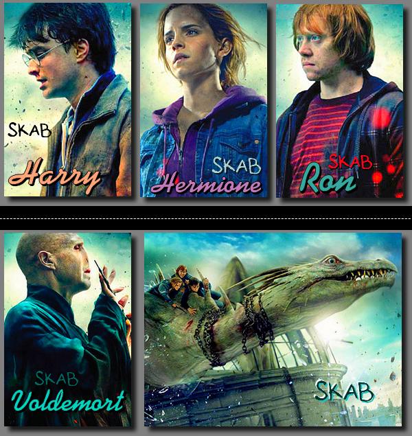 Film 8 : Harry Potter et les reliques de la mort partie 2