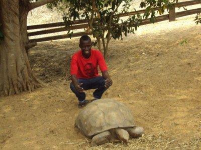 pueblo de tortuga