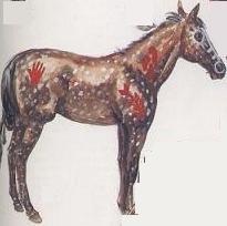 Peinture pour chevaux