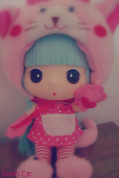 Présentation de Ma Ddung Pink Cat............. :)