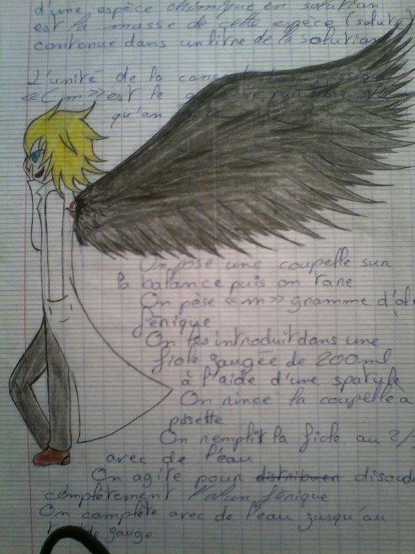 Salem l'ange déchu