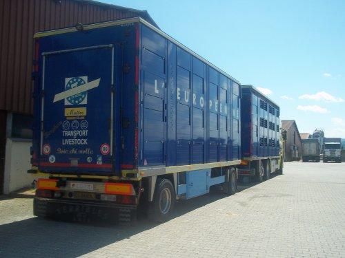 Trasporti gervasonie