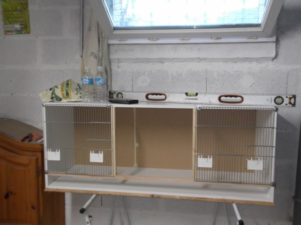 Ma toute première pièce d'élevage 4x4 m, réalisée dans le fond de mon sous-sol, avec une fenêtre châssis qui est ouvert en permanence, et mes premières batteries réalisées par moi-même ainsi que la volière de 3 x 1.3  x 2.5 m