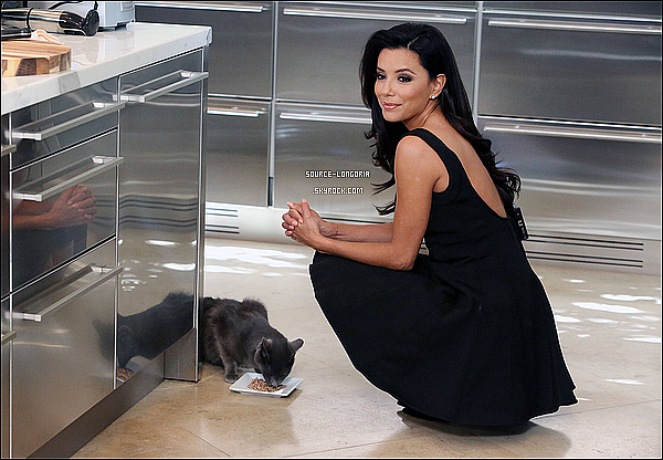 - 07/03/13: Eva Longoria était au lancement de la campagne  « Sheba » à New York.♥  -